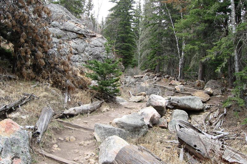 Trail #9 - 6,420'