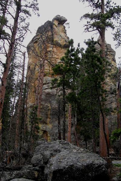 Trail #9 - 6,600'