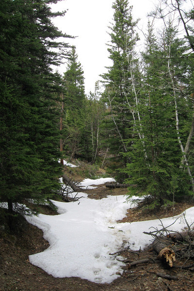 Trail #2 - 6,350
