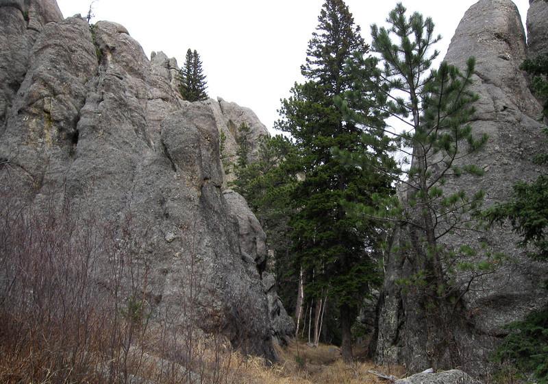 Trail #2b - 6,380'