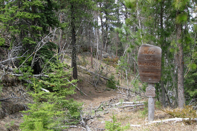 Black Elk Wilderness Boundary - 6,405'