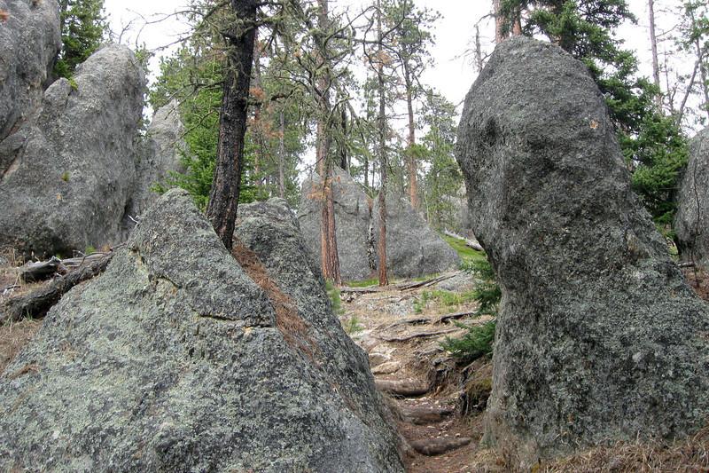 Trail #2b - 6,420'