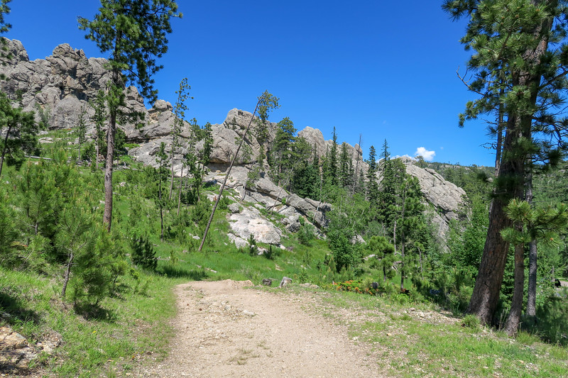 Cathedral Spires/#4 Trail -- 6,290'