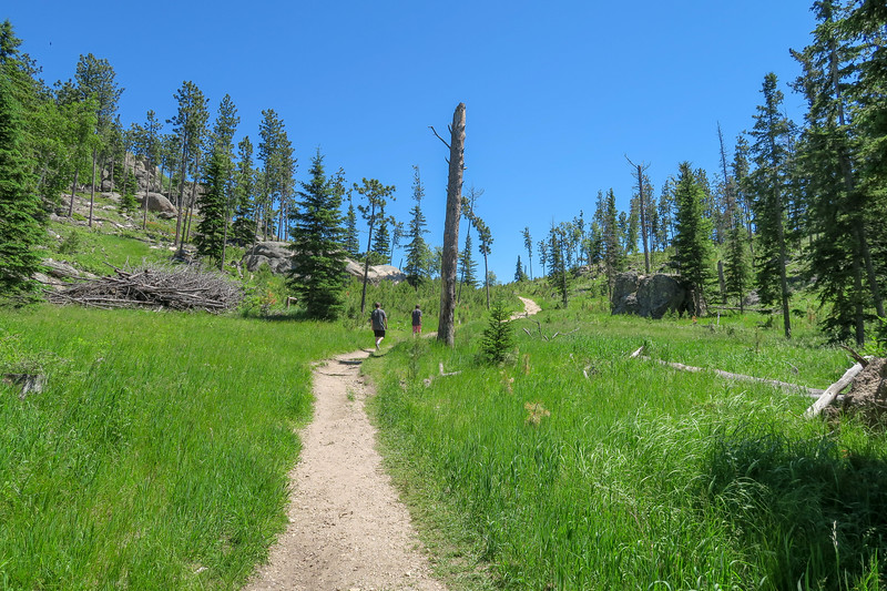 Cathedral Spires/#4 Trail -- 6,250'