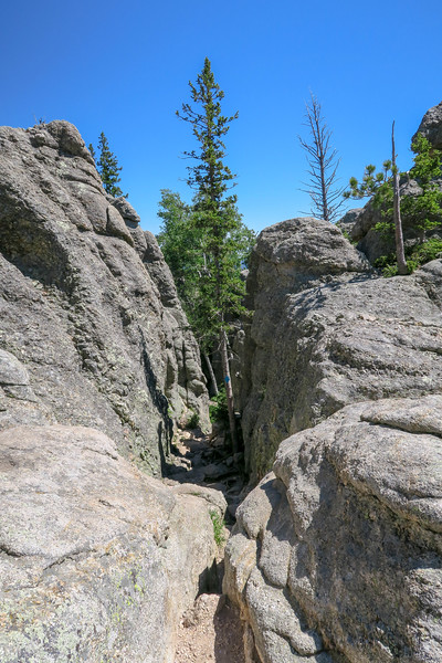 Little Devils Tower/#4B Trail -- 6,900'