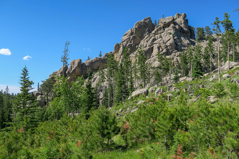 Cathedral Spires/#4 Trail -- 6,260'