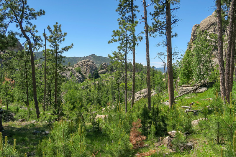 Cathedral Spires/#4 Trail -- 6,300'