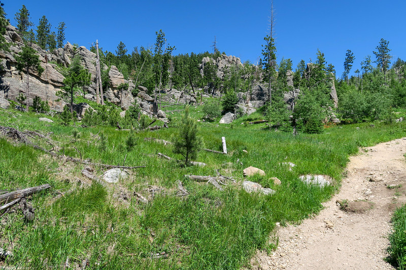 Cathedral Spires/#4 Trail -- 6,400'