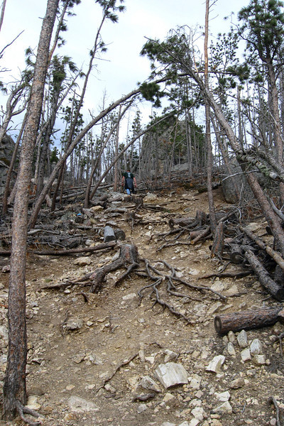 Little Devil's Tower Summit Spur - 6,700'