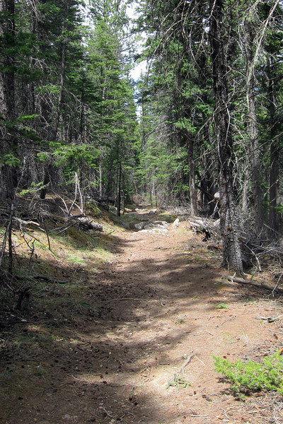 Sunday Gulch Trail - 5,640'