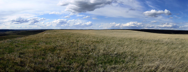 As a butte, the summit is broad and flat...in effect, a small mountaintop prairie...