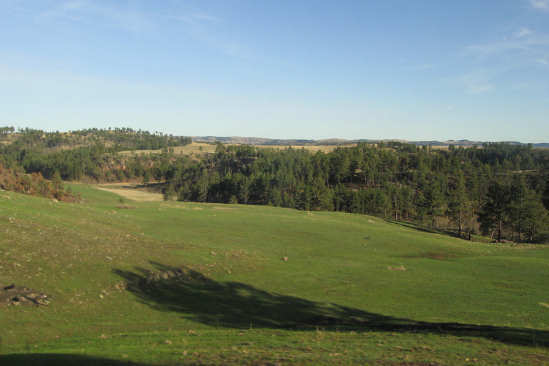 We didn't get to explore the above ground portion of the park (over 28,000 acres) but through the windows of our bus...here, the high plains meet the forested Black Hills providing for a wide variety of flora and fauna...