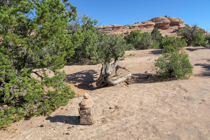 Delicate Arch Trail-- 4,680'