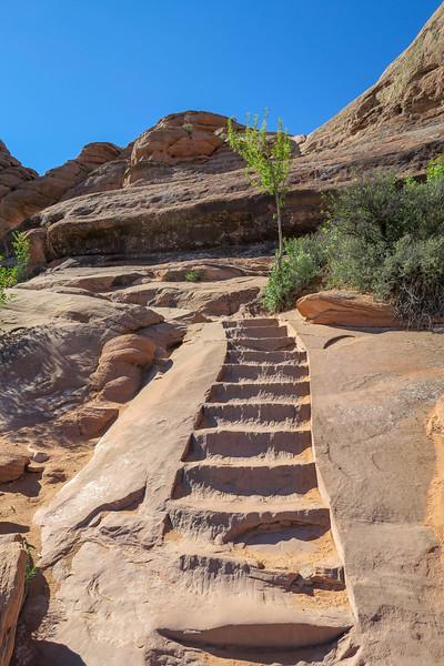 Delicate Arch Trail-- 4,820'