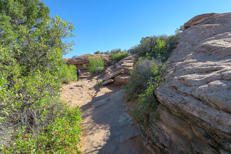 Delicate Arch Trail-- 4,620'