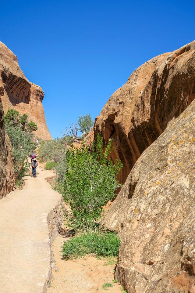 Devil's Garden Trail -- 5,260'