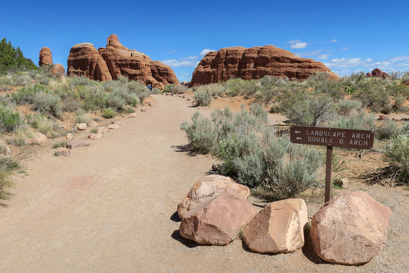 Devil's Garden Trail-Pine Tree/Tunnel Arch Spur Junction -- 5,200'