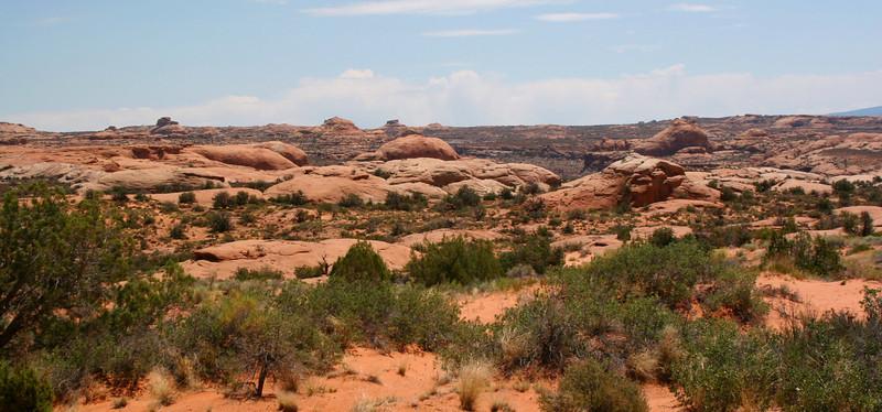 Petrified Dunes - 4,440'
