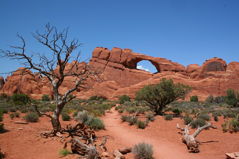 Arches National Park, UT (7-2-08)