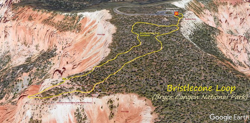 Bristlecone Loop Trail -- Route Map