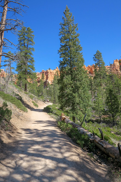 Queen's Garden Trail -- 7,440'