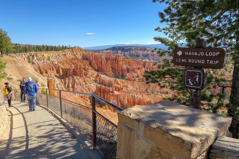 Navajo Loop Trail -- 8,000'