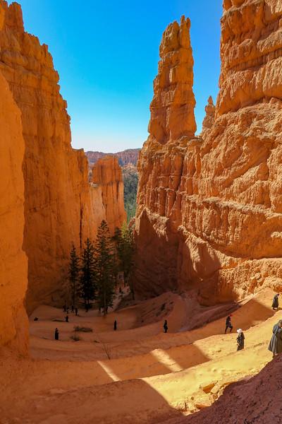 Navajo Loop Trail -- 7,840'