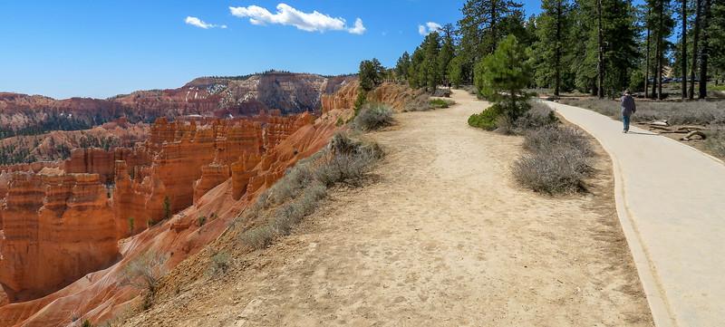 Rim Trail -- 7,980'