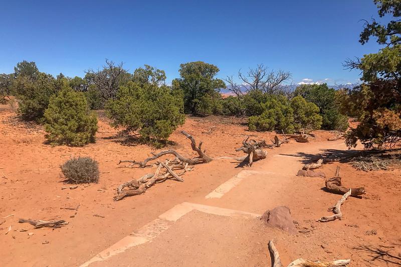 Mesa Arch Trail -- 6,170'