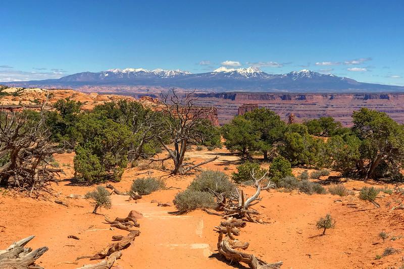 Mesa Arch Trail -- 6,140'