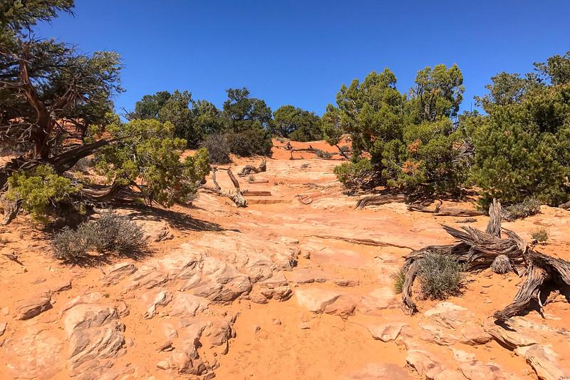 Mesa Arch Trail -- 6,120'