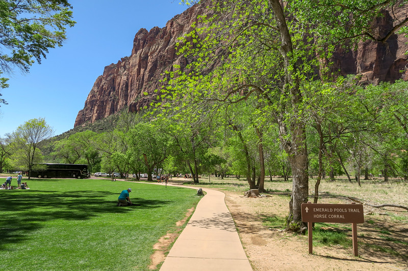 Zion Lodge Trailhead  -- 4,250'