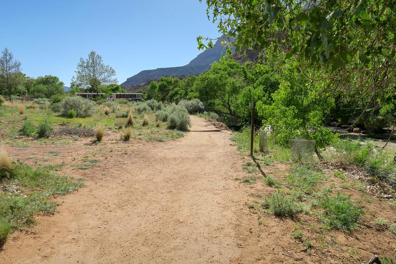 Watchman Trail -- 3,900'