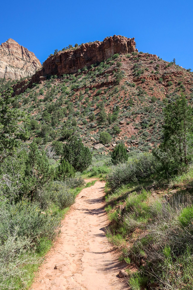 Watchman Trail -- 4,000'