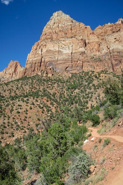 Watchman Trail -- 4,420'