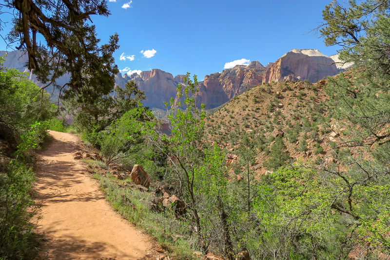 Watchman Trail -- 4,350'