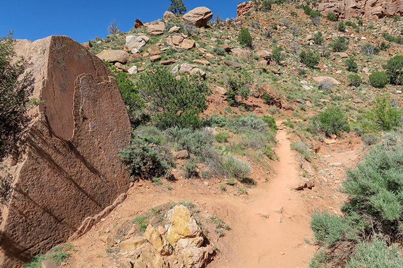 Watchman Trail -- 4,060'