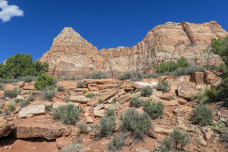 Watchman Trail -- 4,380'