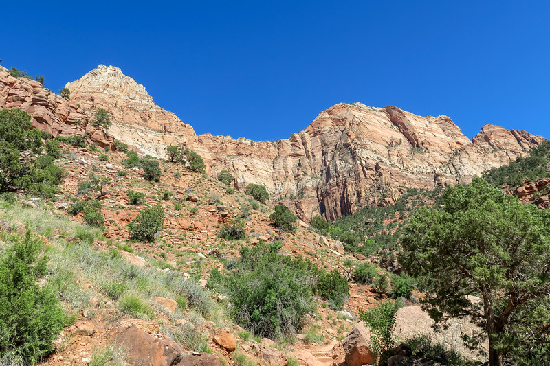 Watchman Trail -- 4,120'