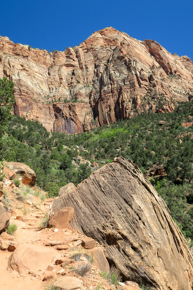 Watchman Trail -- 4,280'
