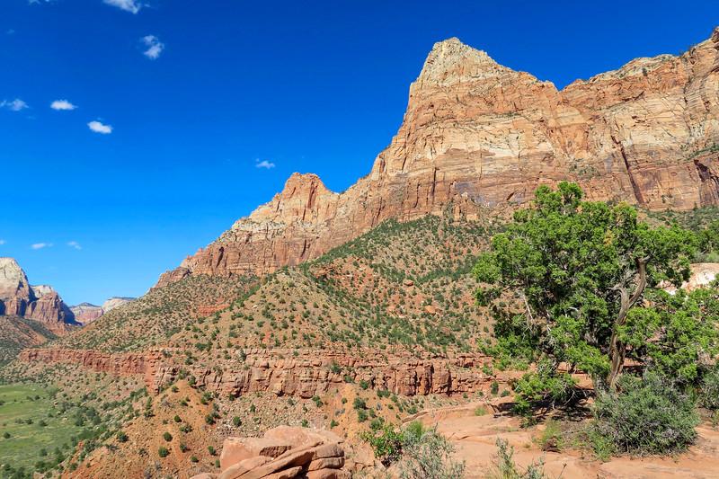 Watchman Trail Overlook -- 4,350'