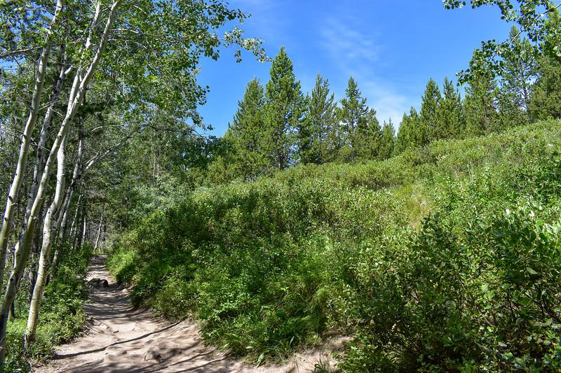 Taggart Lake Trail -- 6,800'