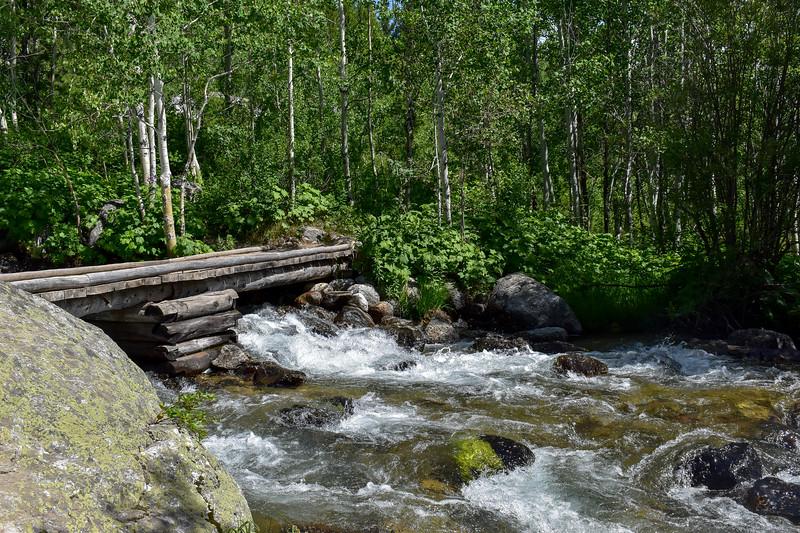 Taggart Lake Trail @ Taggart Creek -- 6,670'