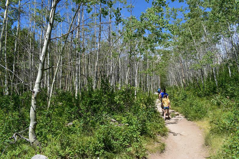 Taggart Lake Trail -- 6,750'