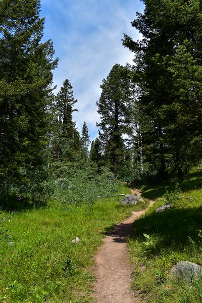 Bradley Lake Trail -- 7,090'