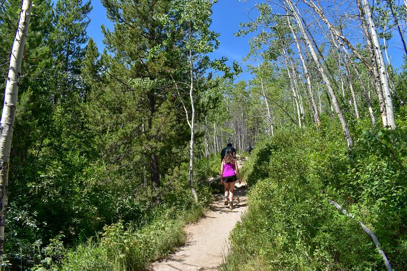 Taggart Lake Trail -- 6,680'