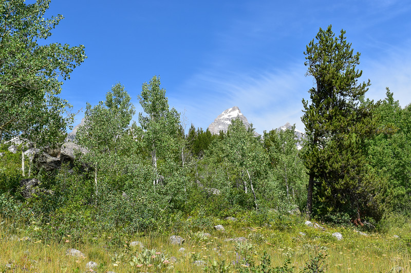 Taggart Lake Trail -- 6,660'