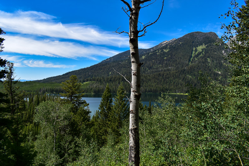 Bradley Lake Trail -- 7,020'