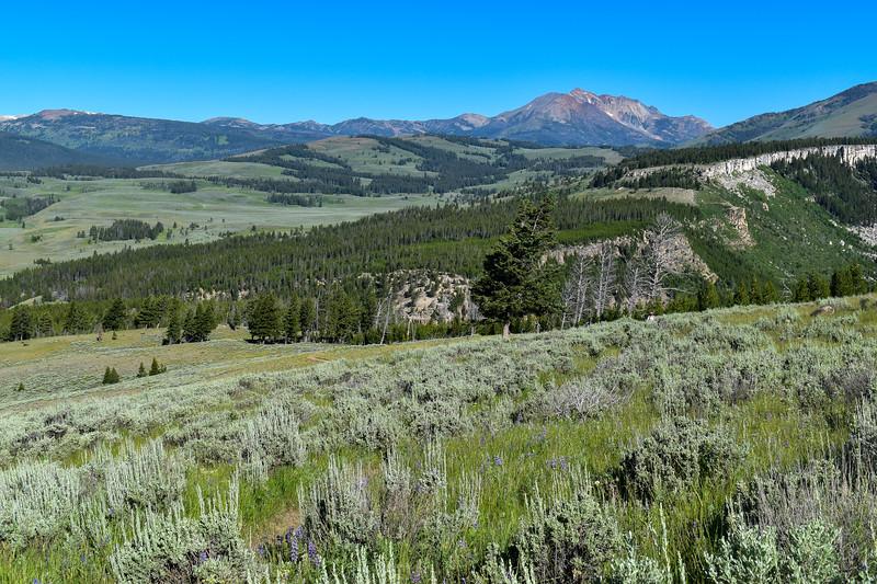 Bunsen Peak Trail -- 7,760'