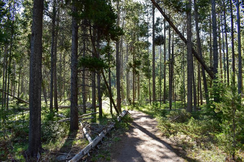 Bunsen Peak Trail -- 7,480'